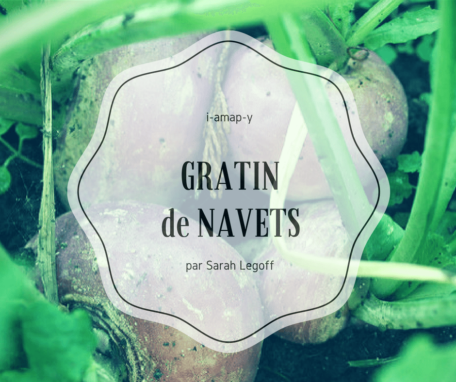 Gratin_de_navets